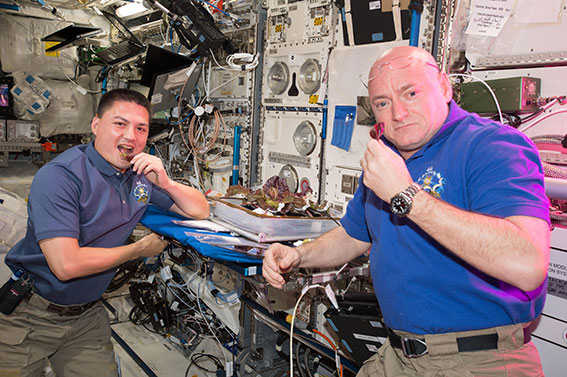 Veg in Space! Learn about Space Gardening
