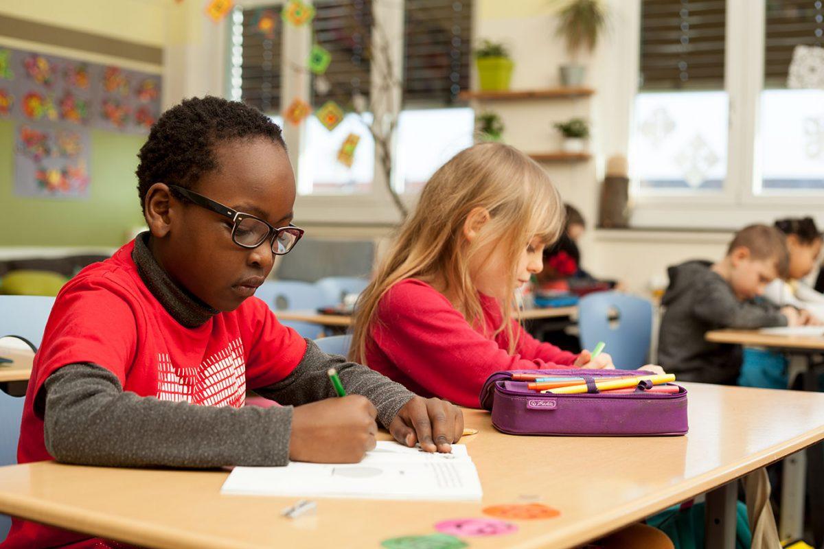 Cross-Curricular: STEM & Literacy